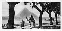 BR40516 The pyramids chamel cairo     Egypt
