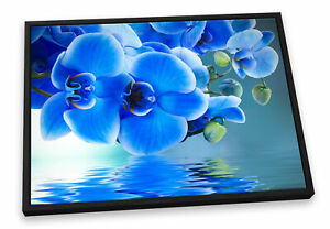 Floral Flower Reflection Blue CANVAS FLOATER FRAME Wall Art Print Picture
