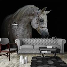 Fototapete XXL Wandbilder Tapete 249420FW Weißes Pferd Tiere / Fauna