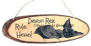 Devon Rex Cat art painting hanging sign Rule Here from original Suzanne Le Good
