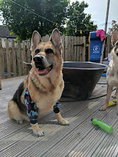 Dog padded Elbow protectors ,calluses ,pressure sores,damaged joint Arthritis.