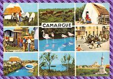 Postcard - Camargue