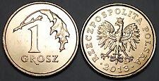 2013 Poland Old Style 1 Grosz Brass Coin BU Very Nice KM # 276