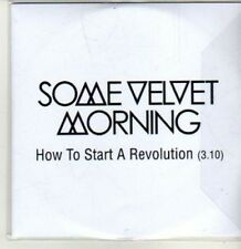 (CS947) Some Velvet Morning, How to Start a Revolution - 2012 DJ CD