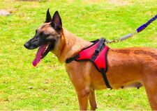 No Pull K9 Dog Harness - S/M/L Adjustable for Dog & Puppy Padded Heavy Duty