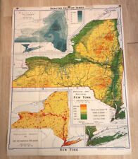 Vintage Denoyer Geppert Physical And Political Map Of NEWYORK J131rp 57x43