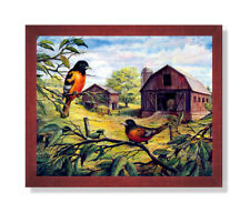 Oriole Birds Wood Barn Country Animal Wall Picture Cherry Framed Art Print