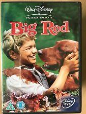 Walter Pidgeon Rojo Grande ~ 1962 Perro Irlanda Walt Disney Película Clásica Gb