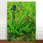 Vincent Van Gogh Iris Flower ~ FINE ART CANVAS PRINT 8x12""
