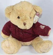 Helzberg Diamonds THE I AM LOVED SPARKLE TEDDY BEAR w/ KNIT SWEATER Plush NEW