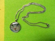 "GREY CAT GLASS DOME CABOCHON PENDANT - STAINLESS CURB NECKLACE 24"" NEW # 443"