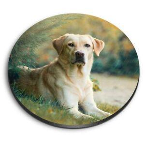 Round MDF Magnets - Labrador Retriever Dog Pet  #21777