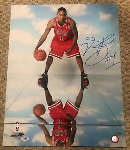 DERRICK ROSE Autographed Signed Bulls 16x20 Photo File Photo PSA/DNA COA