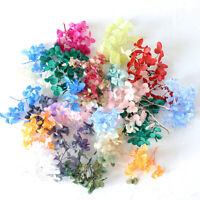 1G Hydrangea Dried Flower Aroma Candle Epoxy Filling Nail Decor Handmade DIY