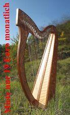 15 Euro Gutschein für Miete Irisch Keltische Harfe  Harp 27 Saiten incl Tasche
