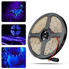 3528 UV Ultraviolet Purple Waterproof 60LED/M Strip Lamp Black Light DC 12V