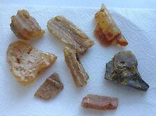 Dominican Yellow Amber Rough Medium Stones Nuggets 219 Grams