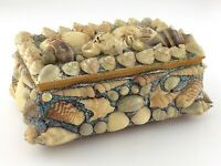 Vintage Sea Shell Jewellery Trinket Box Nautical Decor Treasure Chest R472