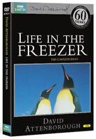 Vida en el Congelador DVD Nuevo DVD (BBCDVD3713)