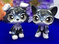Littlest Pet Shop, Galaxy Short Cat & Dog Puppy, Collie Ooak Custom Hand Painted