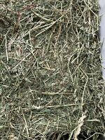 Orchard Grass,Timothy 9 Lbs Of Hay RABBITS,CHINCHILLAS, Guinea Pig, Hamsters.