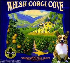 Marshall Canyon Cardigan Welsh Corgi Dog Orange Citrus Fruit Crate Label Print