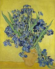 Vincent van Gogh Irises Flora Wall Decor Art CANVAS PRINT Giclee Poster 8x10