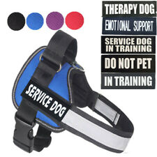 Service Dog Pet Vest Harness Collar W/ Removable Patches DO NOT PET IN TRAINING