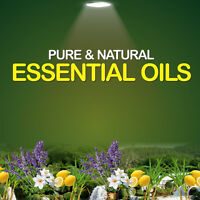 30ml (1oz) Essential Oils 100% Pure Wide Range Free Shipping World wide