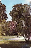 Postcard Brookgreen Gardens Myrtle Beach South Carolina