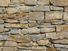 Trockenmauersteine Naturstein Trockenmauer Belg. Grauwacke 8-40