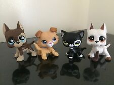 2 pcs Random Littlest Pet Shop LPS Great Dane 817 750 Collie 2452 Cat 2249