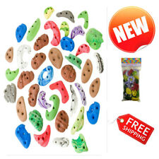 Metolius Climbing Wall Holds Kids Rock Screw-On Greatest Chips Assorted 40 Pack