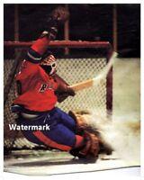 1972 WHA New York Raiders Goalie Gary Kurt Color  8 X 10 Photo Picture