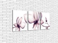 LW005 Bild Wandbild Leinwand Bilder Kunstdruck Blume Lila Weiß Orchidee 3tlg