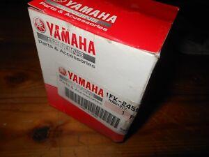 NEW OEM Yamaha FZS1000 XVZ13 +++ Element Fuel Gas Filter # 1FK-24560-10-00