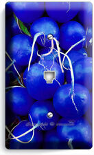 BLUE RADISHES PHONE TELEPHONE WALL PLATE COVER VEGAN VEGETARIAN KITCHEN HD DECOR