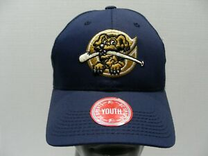 CHARLESTON RIVERDOGS - MiLB - YOUTH One Size Adjustable Ball Cap Hat!
