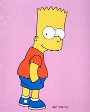 Simpson, Bart [The Simpsons] (27670) 8x10 Photo