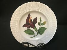 "Royal Cauldon ~ Flowers of the Caribbean Plate ~ 9 1/2"" ~ BLUE MAHOE"