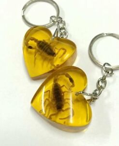 5 pc new YQTDMY yellow scorpion   insect cool heart insect style key-chains hs10