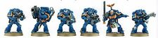 Warhammer 40k Space Marine Tactical Squad from Battle for Vedros