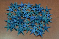 90 Pcs Natural Blue Flat Starfish Star Sea Shell Beach Craft #7602