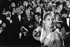 URSULA ANDRESS Photographe FESTIVAL du FILM à CANNES Paparazzi Photo 1965