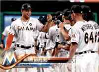 2018 Topps Miami Marlins #73 (114151)