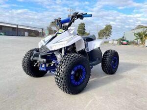125CC ATV Sport Quad Dirt Bike 4 Wheel Buggy Go kart Semi Auto 1+1 Ranger BLUE