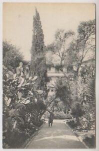 Algeria postcard - Hotel St George. Algiers (Path in the Garden) (A7)