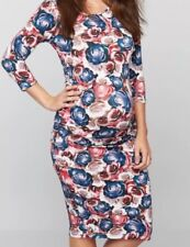 Isabella Oliver Pea in the Pod Womens Midi Tyler Dress sz 3 Small Floral NWOT