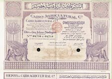 EGYPT CAIRO AGRICULTURE COMPANY  stock certificate 1928