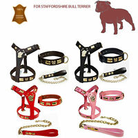 STAFFORDSHIRE BULL TERRIER LEATHER DOG HARNESS COLLAR &LEAD SET BRASS KNOT SALE!